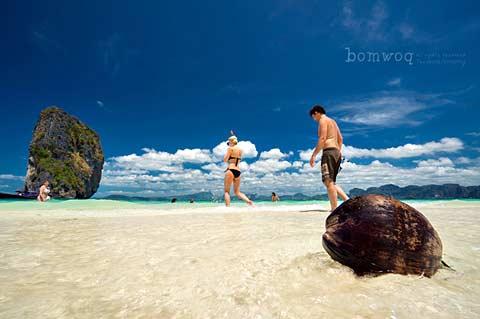 แหล่งท่องเที่ยว หาดนพรัตน์ธารา คลองม่วง กระบี่