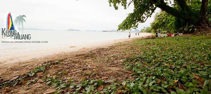 หาดเกาะกวาง กระบี่