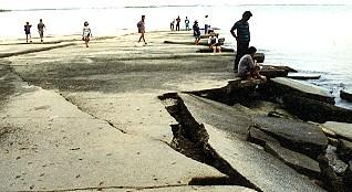 Fossil Shell Beach สุสานหอย